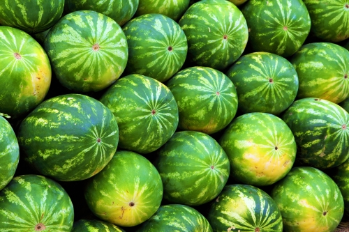 watermelon benefits and presence