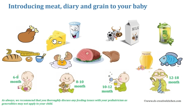 baby,food,introducing,infographic,diary